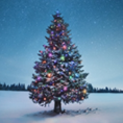 picture of a Christmas Tree